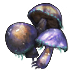 Cave mushrooms(716).png