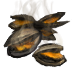 Roasted clams(645).png