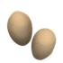 Two chicken eggs(418).png