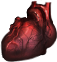 Heart of a champion(573).png